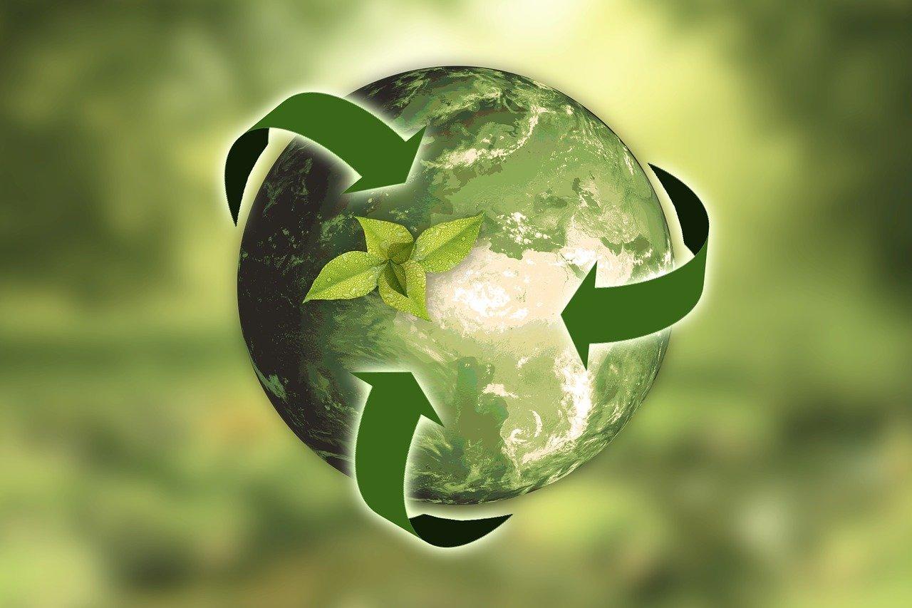 Отчетность по экологии и природопользованию: кому и зачем нужно